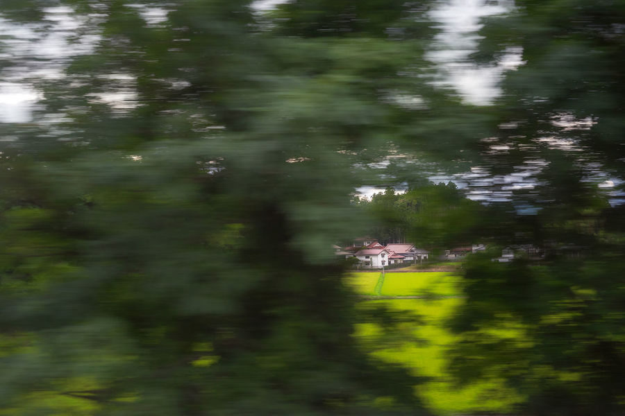 from the Bullet Train. Japan. Architecture Japan Shinkansen YAMAGATA Beauty In Nature Blurred Motion Day Green Color Growth Motion Nature negative space No People Outdoors Plant Scenics - Nature Speed Tranquil Scene Tranquility Tree