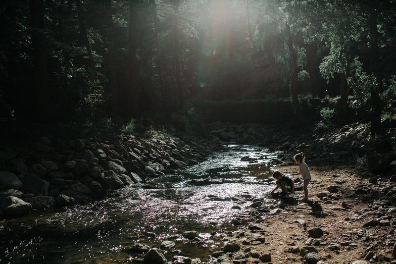 Boy in water at forest