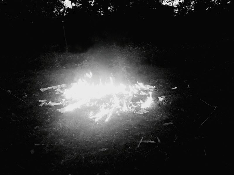 No Effects Jungle Life Nature Wildlife Photography No Edit/no Filter EyeEm Nature Lover Fire And Smoke Eyemphotography Fresh Hello World Blacksmoke Suman Ss Fire And Flames Fire In Nature Fire By Human Nature Photography Black & White Thermal Image Telling Stories Differently Showing Imperfection