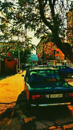 London Lifestyle Tree City No People Day Sky Car My Live, My Wold University Love ♥ Yellow Adra Work ArtWork Baku Carnival Crowds And Details EyeEmNewHere EyeEm Diversity Long Goodbye Resist The Secret Spaces