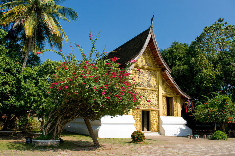 Monastery Architecture ASIA Buddha Buddhism Buddhist Temple Building Buildings Built Structure Day House Laos Living Luang Prabang Monastery Monk  Orange Outdoors Pentax Places I've Been Religion Travel Photography Traveling