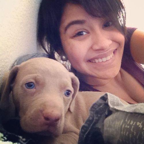 Babe got me a new puppy ?❤️ Weinheimer Boy Earlybdaygift