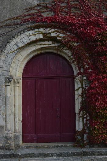 Closed wooden door of old house