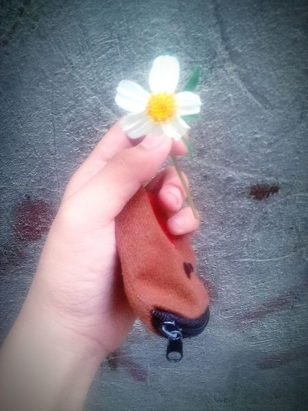 BLOOM LIKE A FLOWER, DONT AFRAID TO SHOW OFF YOUR TRUE COLOR🌻 Flower Day Freshness