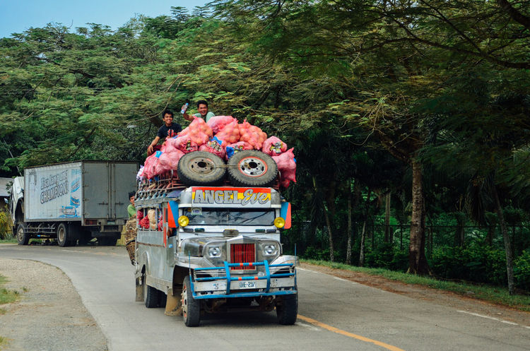 Asian Culture Fullness Happiness The Philippines Travel Working Hard Dangerous Dangerous Driving Dangerous Jobs Happy Working Day Heavy Load Jeepney Jeepney Ride Land Vehicle Local Transport Ontheroad Overloaded Overloading Road Street Photography Transportation Trasnport Tree Truck Unimaginable