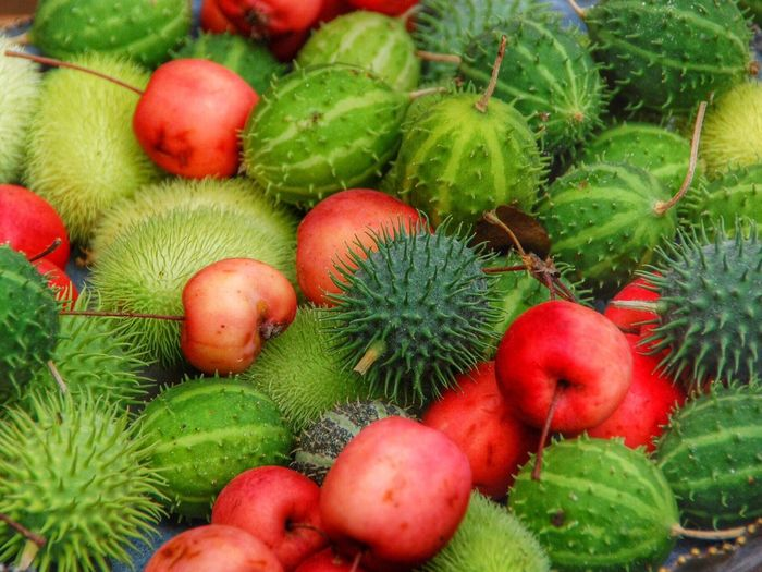 Natural decorations Fall Decoration Apple Red Apple Chestnut Green Red Autumn Autumn Colors Lifestyles Lifestyle Colors Colorful Living Interior Decorating Autumn Decor Fall Decorations Home Decor Home Decoration
