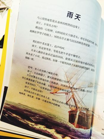 Very beautiful book with much philosophy in it.(need translate?)