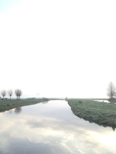 Eyem Nature Lovers  Meadow EyeEm Nature Lover Nature Foggy Morning Haze Dutch Landscape Polder Ditch White Background No People Beautiful Nature