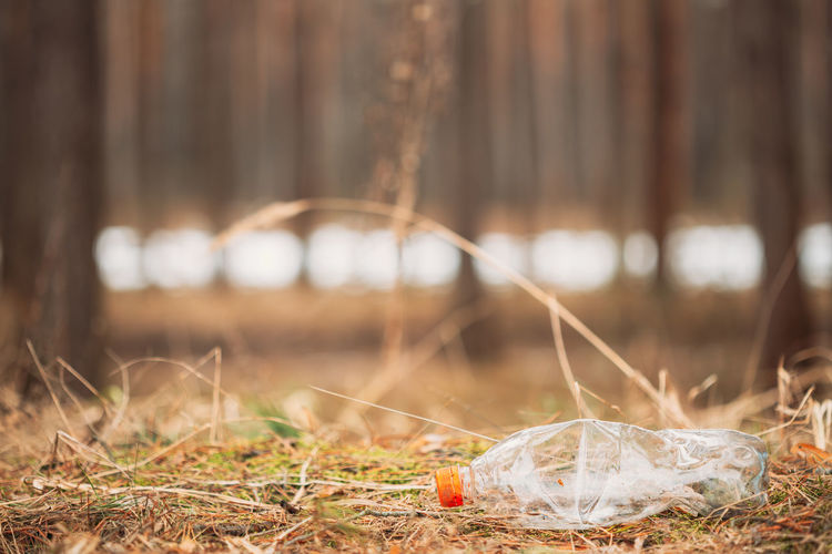 Close-up of garbage on field