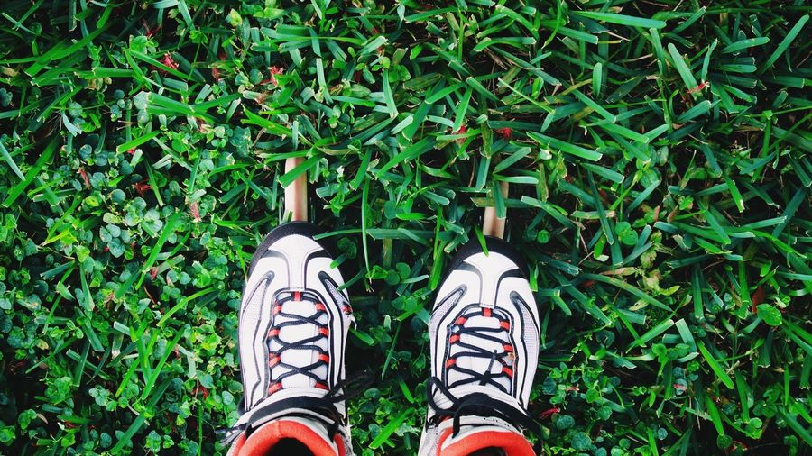 Low Section Shoe Human Leg Standing Personal Perspective One Person Human Body Part Pair Green Color Directly Above Canvas Shoe Outdoors Day Adult Sock People Grass Real People Adults Only One Woman Only BYOPaper!