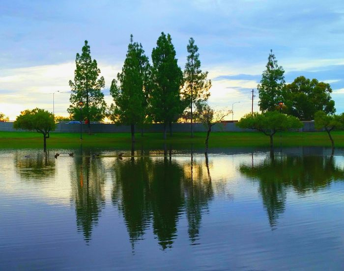 Water Reflections Check This Out Beautiful Nature Sun And Trees