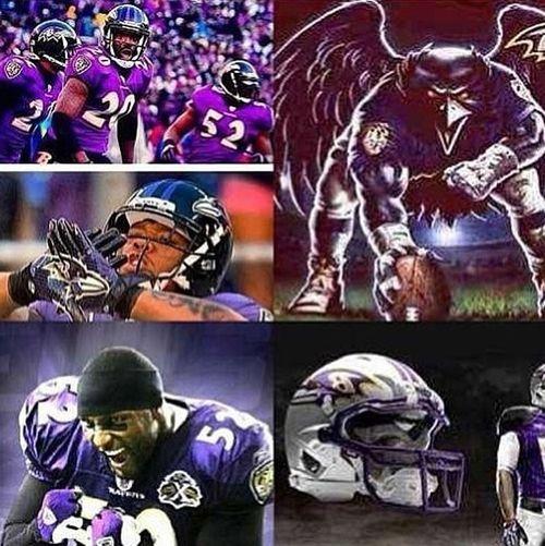 Right Here Aye Ravens