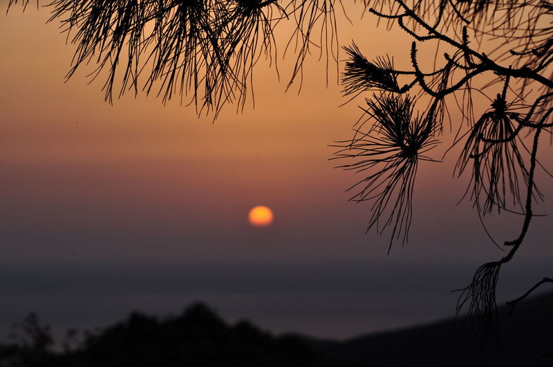 Beauty In Nature Mountain Sundowner Nature Sun Tranquility Tree