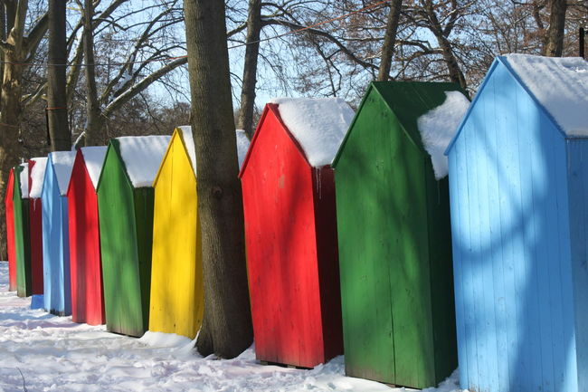 the colors of winter II Winter In Berlin Architecture Day Multi Colored Nature No People Outdoors Tree Winter In Berlin Park Winter Wonderland Wintertime ⛄ Shades Of Winter