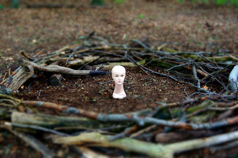 Mannequin amidst twigs on field