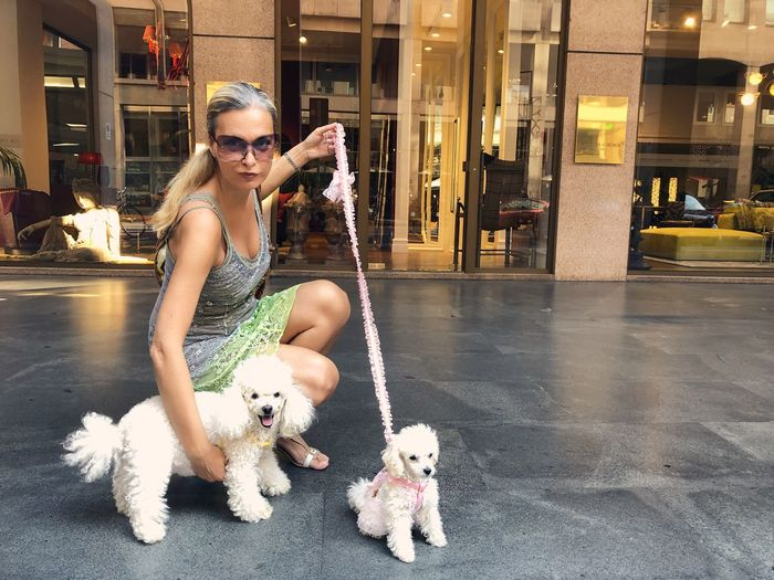 Portrait of mature woman wearing sunglasses with dogs crouching on footpath against building in city