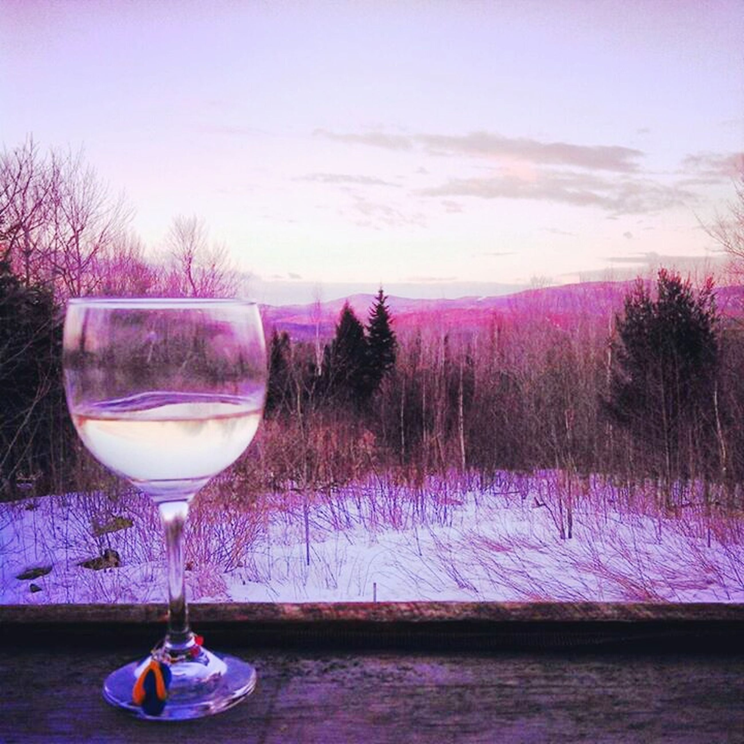 wineglass, drink, drinking glass, food and drink, table, glass - material, refreshment, freshness, sky, tree, alcohol, transparent, close-up, pink color, nature, reflection, still life, beauty in nature, focus on foreground, no people