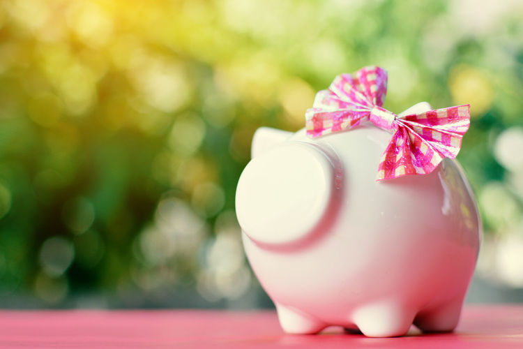 Close-up Day Gift Piggy Bank Pink Color Savings