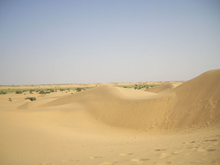 Desert outside Jaisalmer Arid Climate Beauty In Nature Clear Sky Day Desert Extreme Terrain Landscape Nature No People Outdoors Physical Geography Sand Sand Dune Scenics Sky Tranquil Scene Tranquility