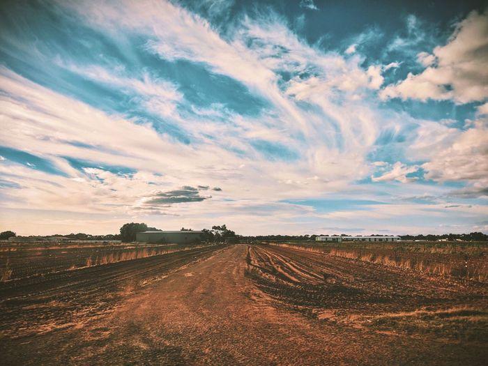 Empty fields EyeEm Best Shots EyeEmBestPics EyeEm Gallery Soil Dirt Road Farmland Farm Cloud - Sky Sky Environment Landscape Scenics - Nature Tranquil Scene Tranquility Beauty In Nature Nature Agriculture Field Land Rural Scene Farm No People Day Outdoors Crop