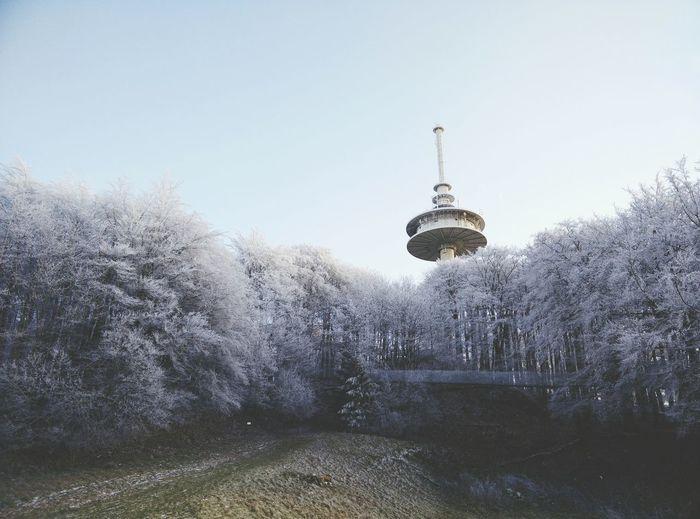 Peak Frost Winter