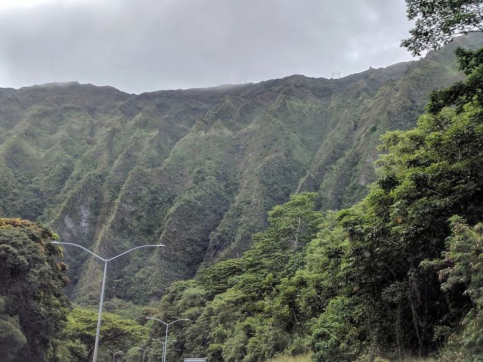 the majestic ko'olau mountains Mountain Landscape Beauty In Nature Overcast EyeEm Gallery Outdoor Photography EyeEm Nature Lover Beauty In Nature Koolau Mountains Verdant Taking Photos Nature Nature Windward Oahu Lush Green Mountains Trees Lush Greenery