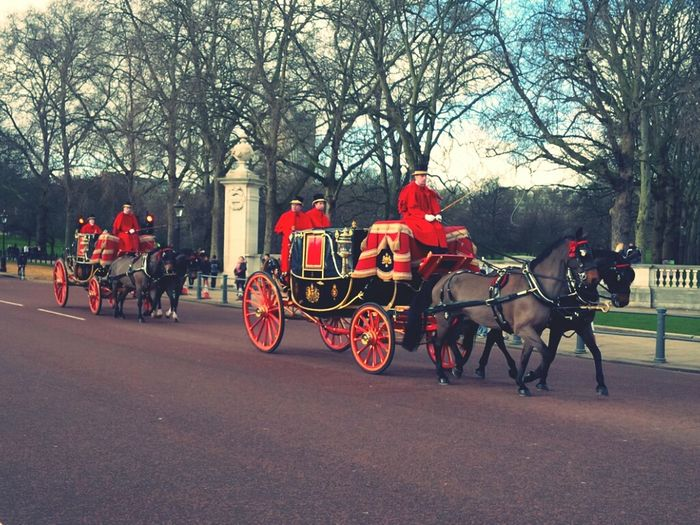 London Horses Palace Royalty Transport Royal Queen Entourage Green Park Carriages