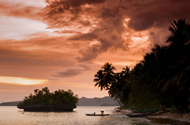 Saporkren Village, Wiago Island, Raja Ampat. A boat heads out on the ocean during a lovely sunset on the island of Wiageo, Raja Ampat, Indonesia. ASIA Beach Boat Cloud - Sky Colorful Dramatic Sky INDONESIA Indonesia_photography Island Landscape Nature Outdoors Outrigger Palm Palm Tree People Raja Ampat Sea Sunset Sunset Silhouettes Sunset_collection Tree Tropical Tropical Paradise Water