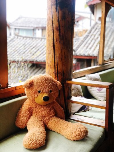 🐻 Stuffed Toy Toy Focus On Foreground Day No People Representation Teddy Bear