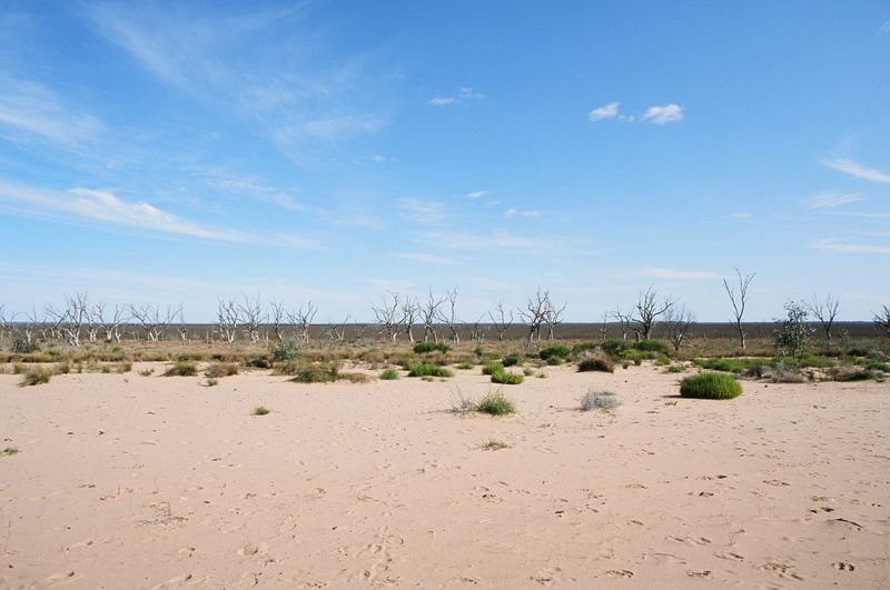 Lake Menindee Brokenhill Agfactprecisa100 Drought Nsw Australia Lakemenindee Outbackaustralia Film Nicgossage.com