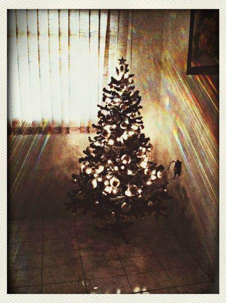 Christmas Christmas Tree Golden Sparkles