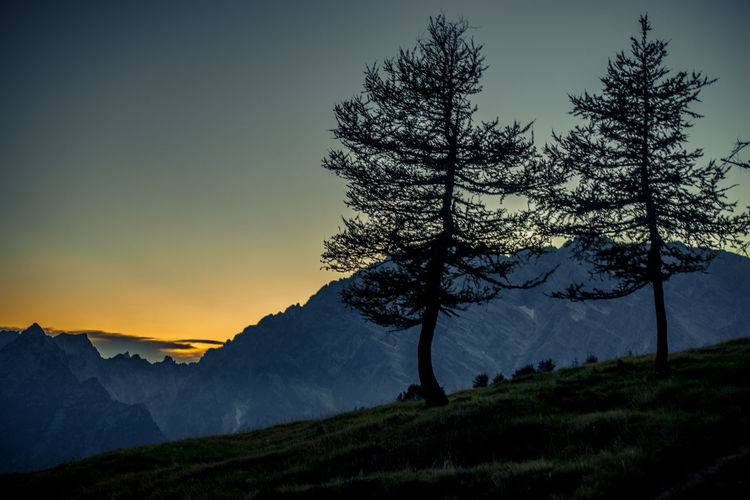 Trees on mountain against sky at sunset