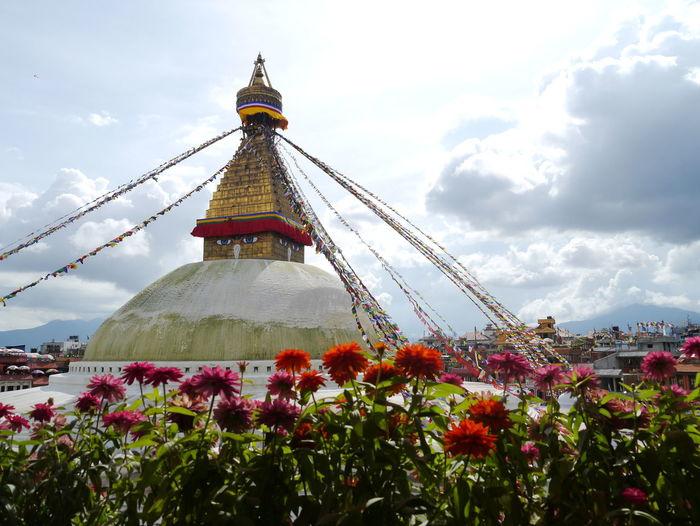 Architecture Buddhist Temple Budhist Building Exterior Built Structure Cloud - Sky Day Flower Freshness Growth Katmandu Nature Nepal Outdoors Plant Sky South Asia Stupa Tibetan  Tibetan Buddhism World Heritage Site