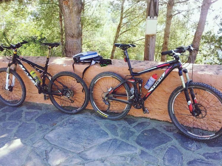Las monturas reposando... Streamzoofamily Trek Mountain Biking Bicycles
