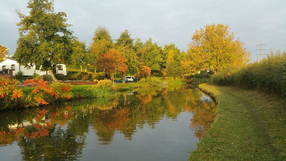 Autumn Colors on the stafford and Worcester canal this morning 16 oct 2015