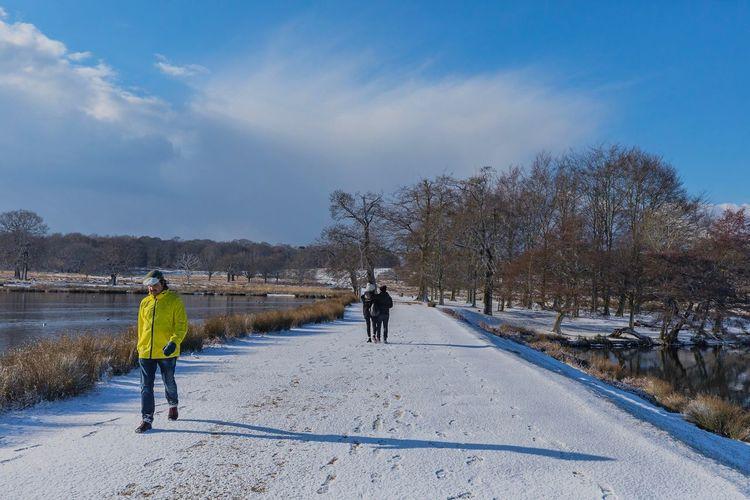 People walking on road in winter