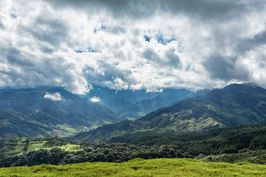 Clouds gather around valleys in rural valleys outside of Salento, Colombia. Cloud Colombia Farm Hiking Palm Pasture Quindío Rural Tree Trip Andean Cauca Colombian  Countryside Forest Hike Jeep Landscape Outdoors Quindío Salento Sky Tolima Trek Wax