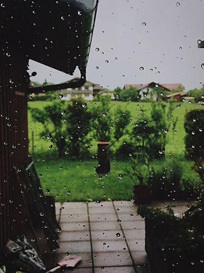 Rainy Day in Bavaria