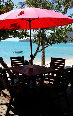 I really enjoyed having my lunch here....best view and the food was fantastic ! At Hydeaway Bay Australia Whitsunday Islands Noedit #nofilter Noedit Nofilter NEM Landscapes NEM Memories Beachphotography EyeEm Nature Lover Eye4photography  EyeEm Best Shots - Nature