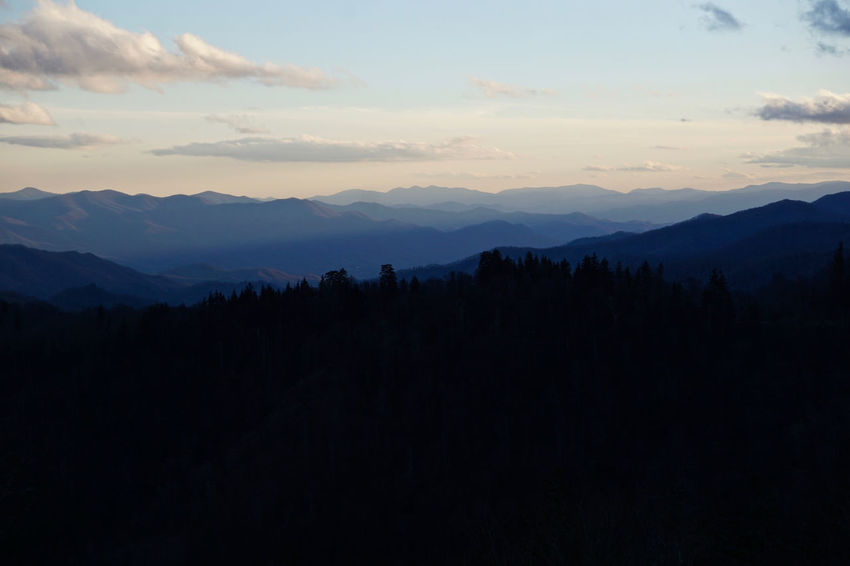 Great Smoky Mountains  Great Smoky Mountains National Park National Park Foggy Forest Landscape Mountain Range Sunset