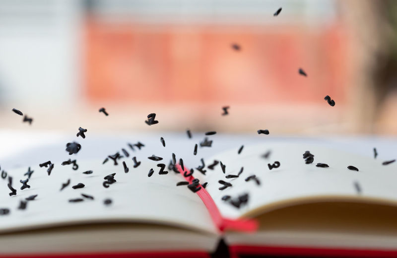 Close-up of books on paper
