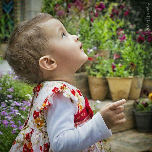 Baby Nikon D3200 Shiraz, Iran Shiraz🍷 Shirazlovers Iran Showcase June