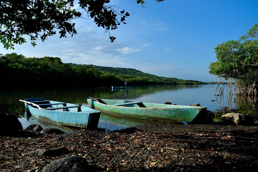 """The Mangrove,""""La Mancha"""". Beauty In Nature Blue Day Lake Landscape Mexico Nature Moored Nature Nautical Vessel No People Outdoors Pedal Boat Scenics Sky Summer Tranquil Scene Tranquility Tree Veracruz, México Water GetbetterwithAlex"""