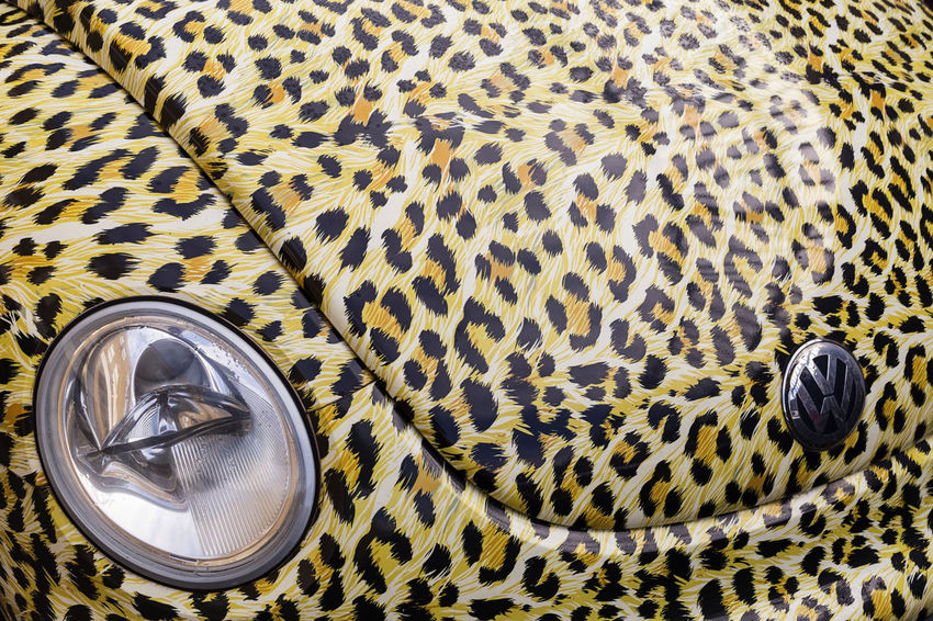 A rather unusual VW Beetle covered in leopard skin design paintwork Art Artistic Photo ArtWork Bonnet Car Close-up Emblem  Headlamp High Angle View Lamp Leopard Skin London Motor Car Motorcar No People Outdoors Outside Paintwork Pattern Uk Unusual VW VW Beetle