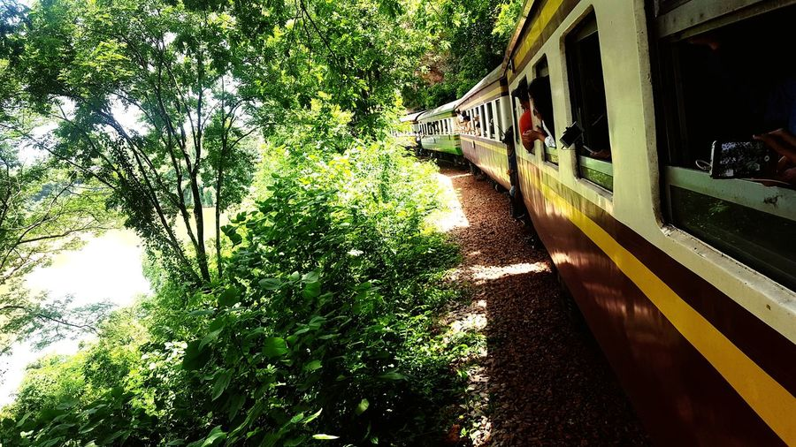 So close,so naural 🏞 Everyone Love Traveling HappyTogether✌🏻️ Trainphotography Sofunny Stuck Here Time To Relax Lets Go Together EyeEmNewHere Back To Kanchanaburi Backpakers Thai Women Travel Destination Travelling Thailand Let See Wht I Get Thailand Is Home Back To Natural Thai Railway Out Of The Box Love To Take Photos ❤