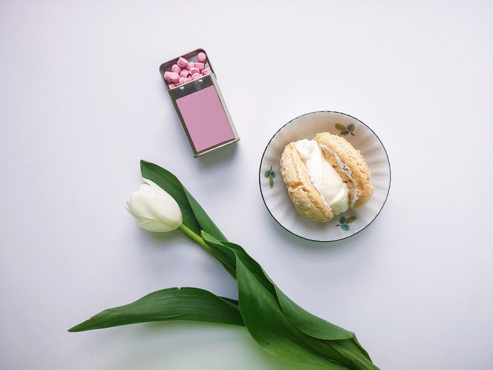 High angle view of dessert on table against white background