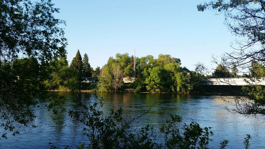 Walking Around the Spokane River on the Centennial Trail , great ahot of the River River View Riverbank Riverscape Riverwalk Enjoying Life Nature Photography Nature_collection Natures Beauty Eyem Gallery Eye4photography  hope u all enjoy as alwese, by Adam O The Essence Of Summer