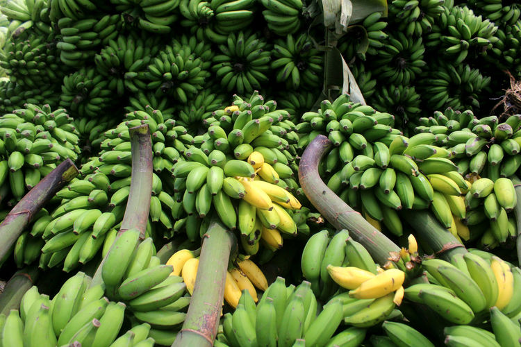 Healthy Eating Green Color Freshness Food Wellbeing Market Large Group Of Objects Fruit Abundance No People For Sale Close-up Retail  Full Frame Raw Food Banana Vegetable Market Stall Outdoors Retail Display