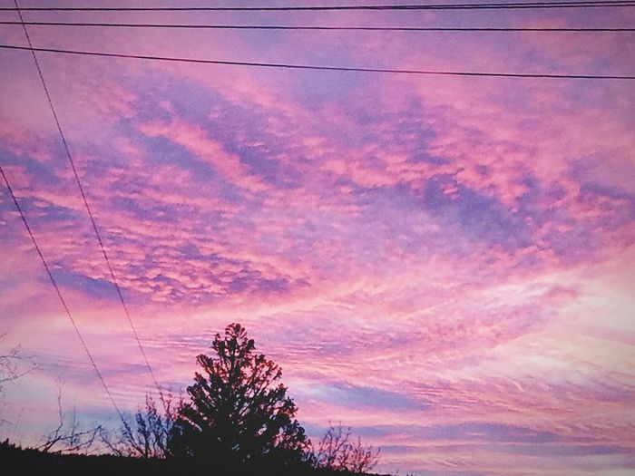 Eastern Oregon sunsets, beautifully in my favor, pink has always been my favorite color. Sunset Cottoncandyclouds Silhouette EOSUNSETS Pink Color Lovetheview