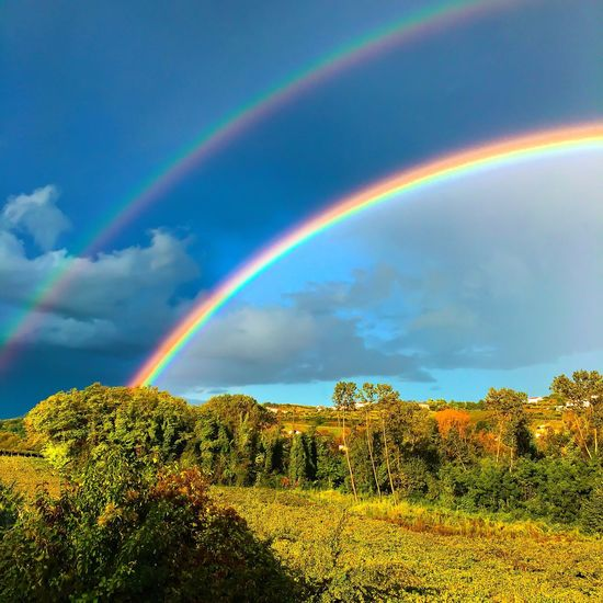 A beautiful day Colors Colorful Raimbow Cloud - Sky Sky And Clouds Sky Sunrise Silouette & Sky Silhouette